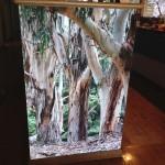 Ceramic Tile Mural featuring Gumtrees