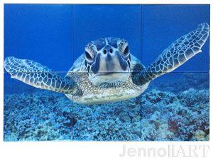 custom Turtle Tiles