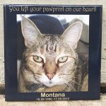 Outdoor Pet Memorial Tiles