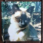 Outdoor Pet Sympathy Tiles