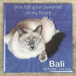 Outdoor Pet Memorial Plaques