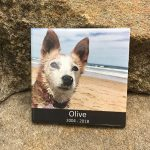 Outdoor Pet Sympathy Plaques