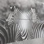 Africa Tile Panel 900x1800mm