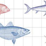 Various Fish Tile Panel