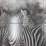 Zebra Mural 900x1800mm